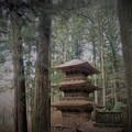 写真: 光前寺三重塔