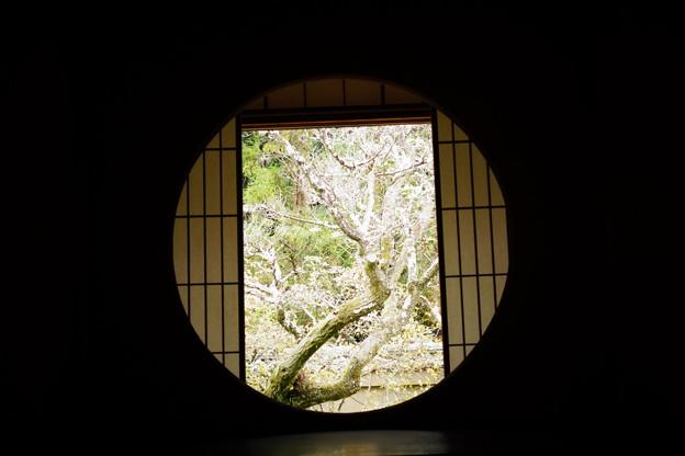 雲龍院悟りの窓