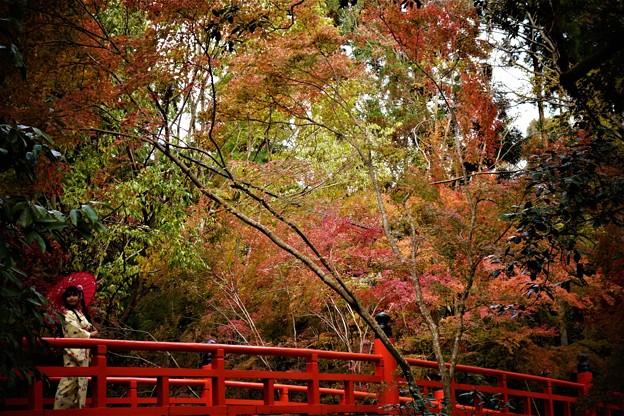 今熊野観音寺鳥居橋