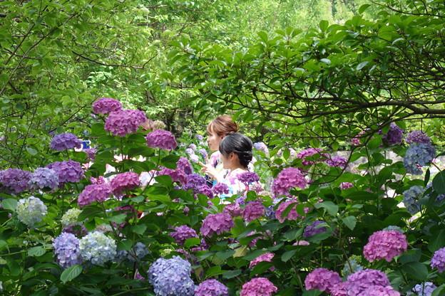 紫陽花に囲まれてピース♪♪