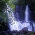 Photos: こもれびの滝
