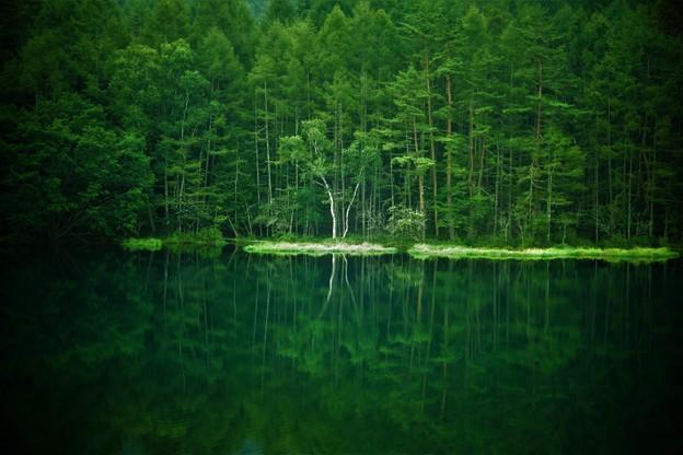 Photos: 緑風薫る