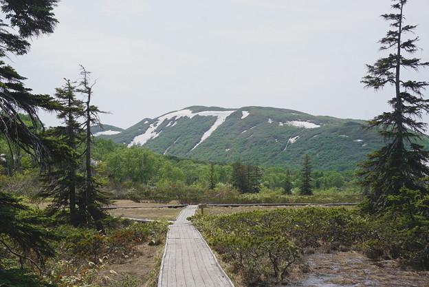 残雪のシャクナゲ岳