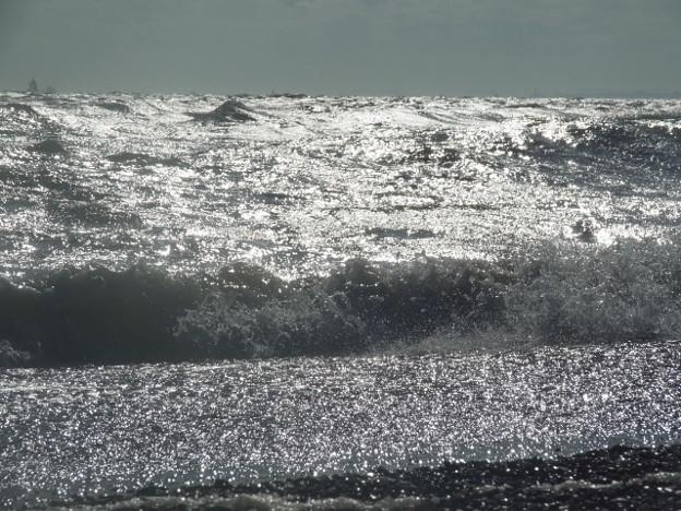 稲毛海岸 海その626 RIMG7053