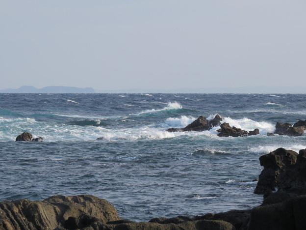 城ヶ島 海その772 IMG_1119