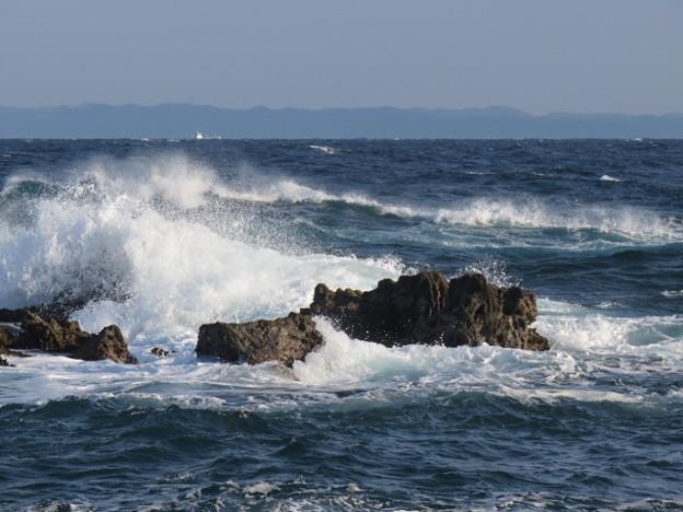 城ヶ島 海その773 IMG_1178