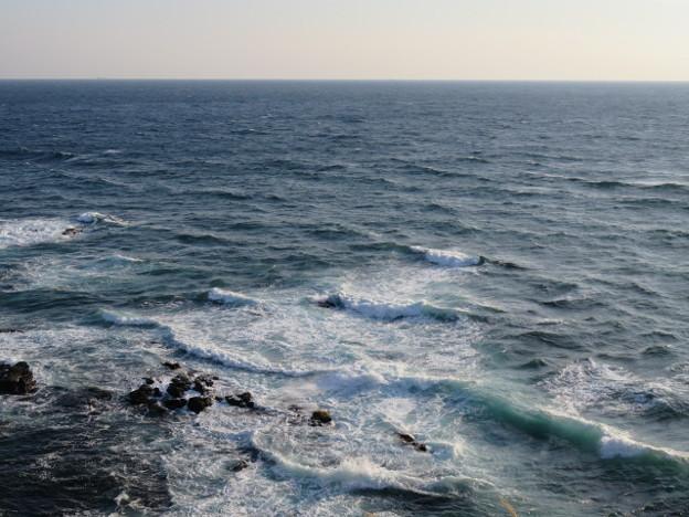 城ヶ島 海その775 IMG_1230