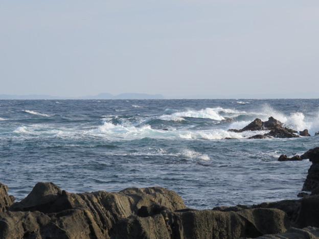 城ヶ島 海その778 IMG_1114