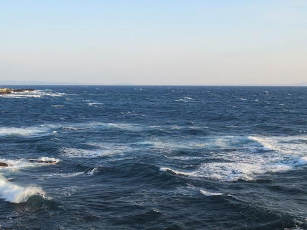 城ヶ島 海その783 IMG_1269