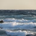 写真: 城ヶ島 海その784 IMG_1292