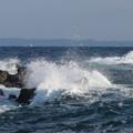 写真: 城ヶ島 海その789 IMG_1182