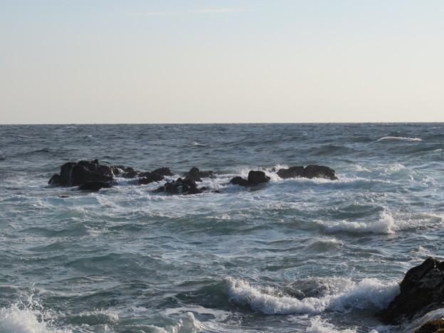 城ヶ島 海その798 IMG_1129