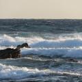 写真: 城ヶ島 海その801 IMG_1289