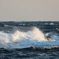 Photos: 城ヶ島 海その804 IMG_1386