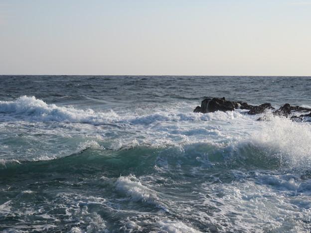 Photos: 城ヶ島 海その807 IMG_1133