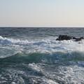 写真: 城ヶ島 海その807 IMG_1133