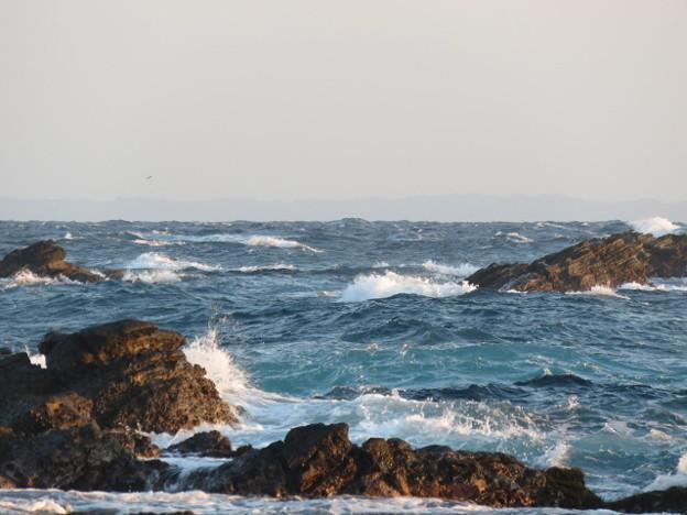 城ヶ島 海その811 IMG_1400