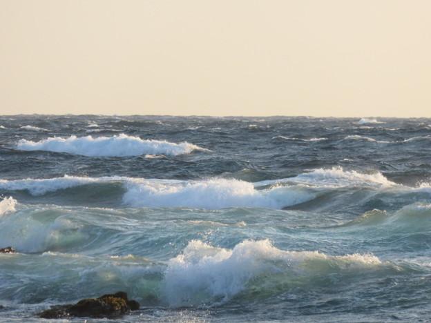 城ヶ島 海その812 IMG_1300