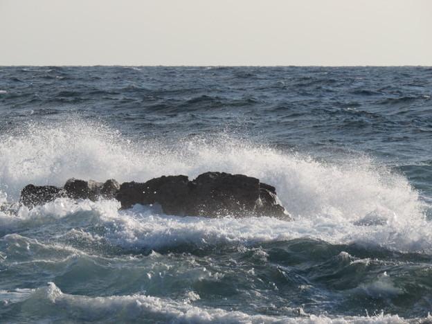 城ヶ島 海その815 IMG_1163
