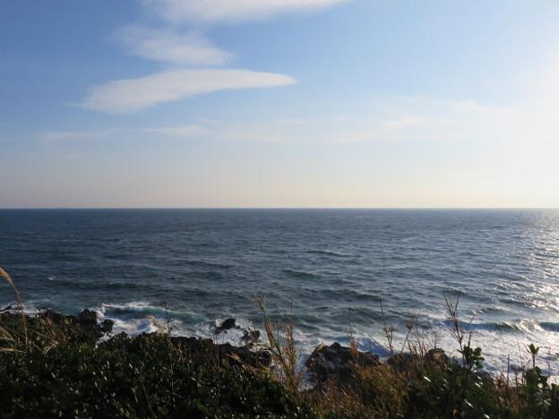 城ヶ島 海その817 IMG_1221