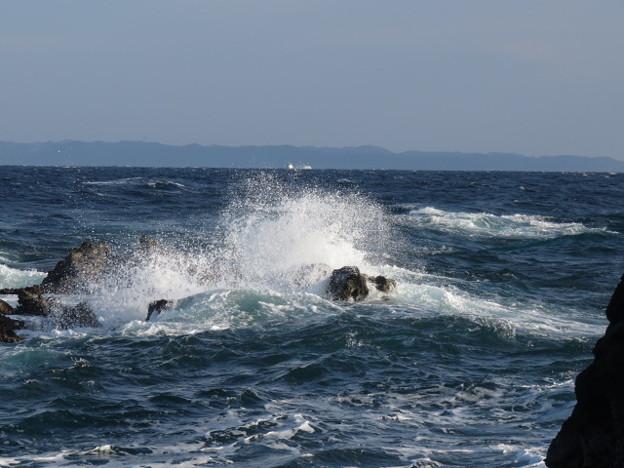 城ヶ島 海その823 IMG_1195