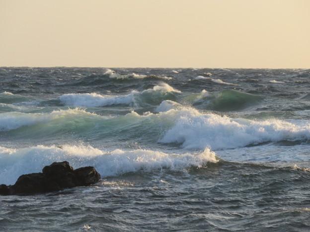 城ヶ島 海その825 IMG_1327
