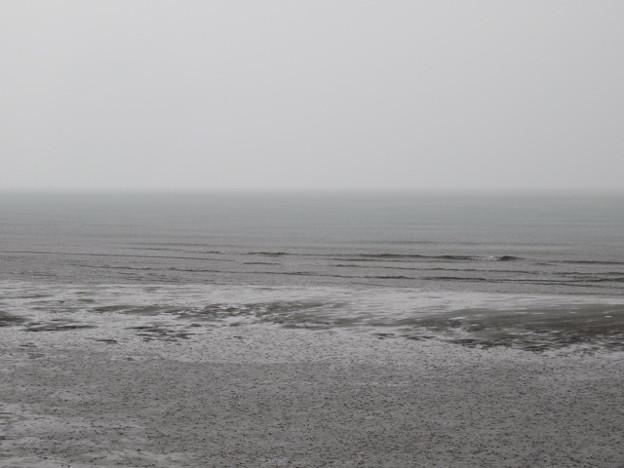 検見川浜 IMG_2920 海その841