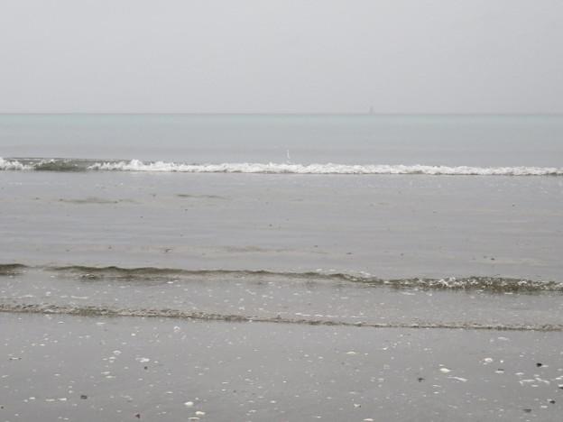 検見川浜 IMG_2939 海その844