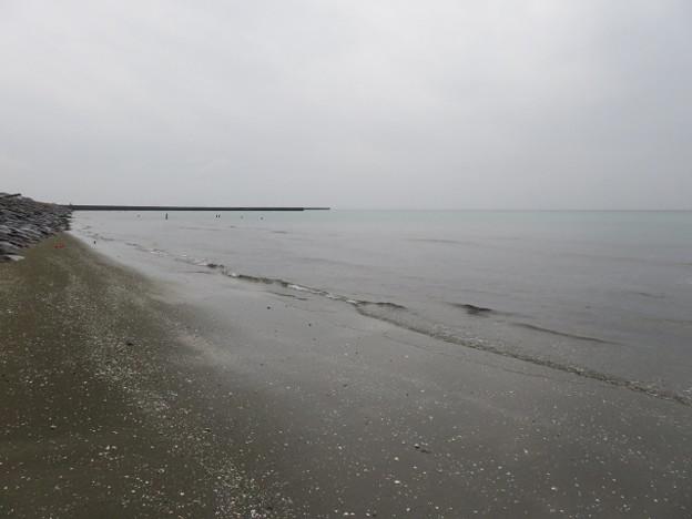 Photos: 幕張海岸 海その846 IMG_2946