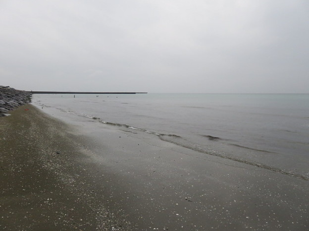 幕張海岸 海その846 IMG_2946
