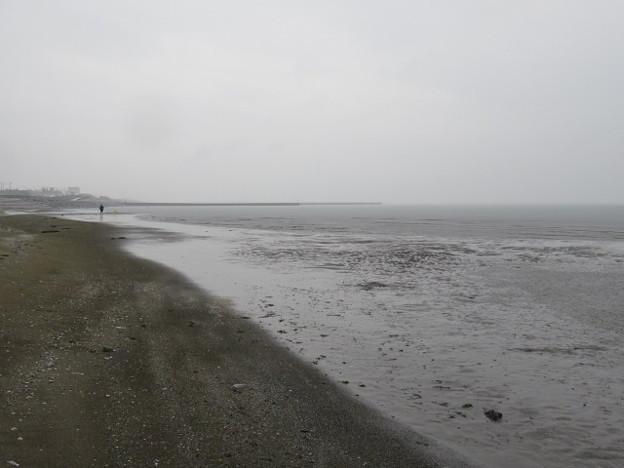 幕張海岸 海その847 IMG_2921