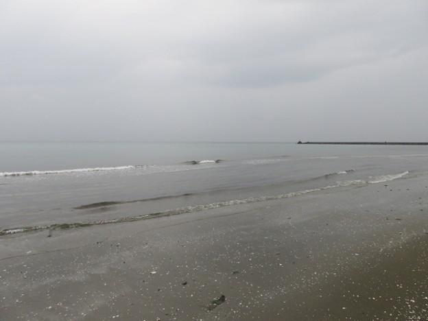 幕張海岸 海その850 IMG_2949