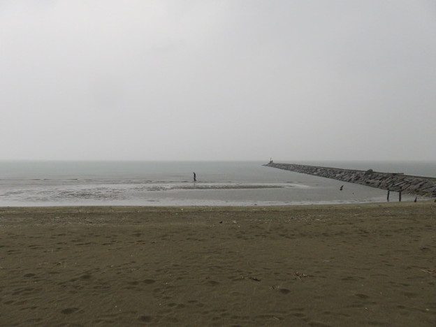 幕張海岸 海その853 IMG_2922