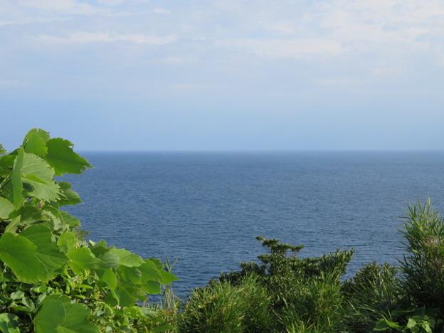 江の島 海その854 IMG_3430