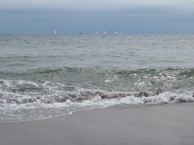 海その882 IMG_3265