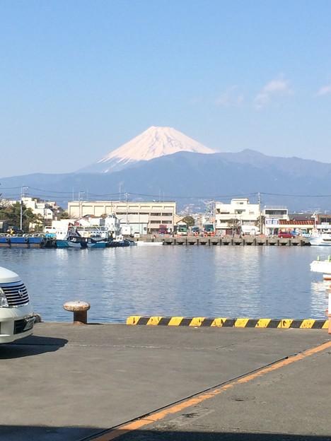 沼津港から見えた富士