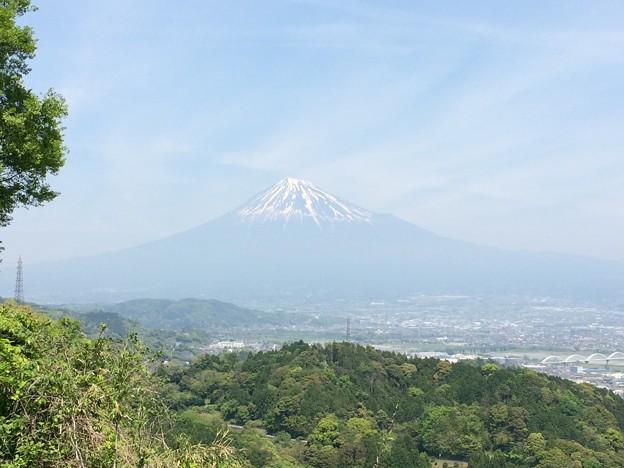 蒲原からの富士