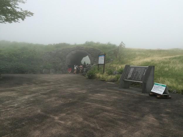 霧に包まれた、富士山子どもの国 入口