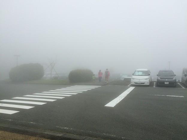 Photos: 霧の駐車場 富士山子どもの国
