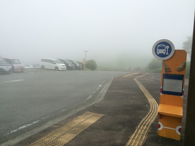 霧のバス停