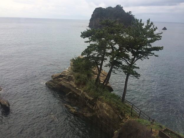 西伊豆海岸