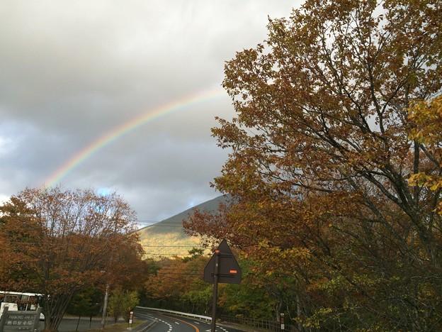 紅葉と虹3