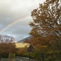 Photos: 紅葉と虹3