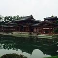 Photos: 宇治平等院鳳凰堂2