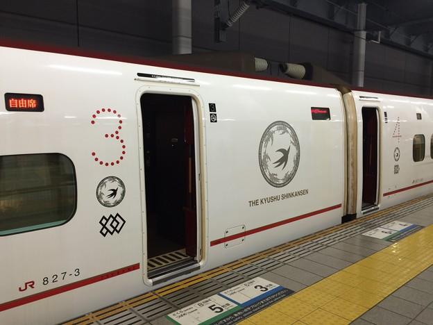 九州新幹線 車体ロゴ