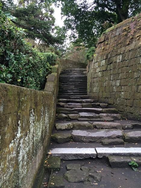 仙巌園 通路