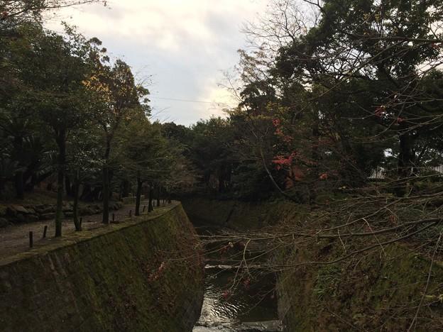 仙巌園 川