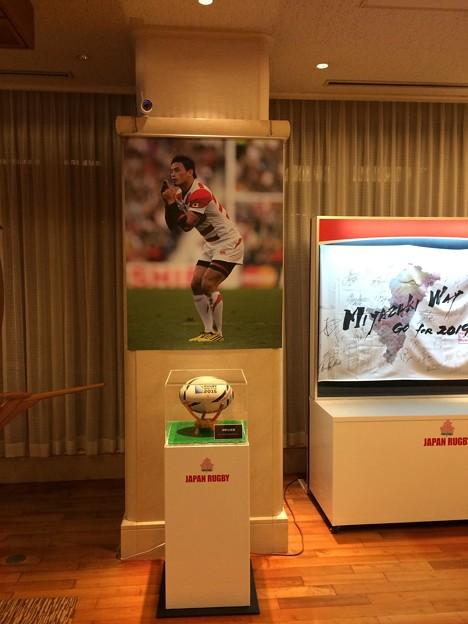 ラグビー日本代表パネル展2