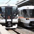 写真: E257系0番台 M-106編成・383系 A203編成