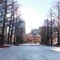 Photos: 赤れんが庁舎